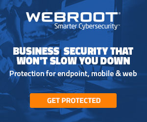 Web-root Cyber-security